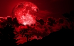 wolves_howling_at_red_full_moon_night_by_christophep-d5xslnj